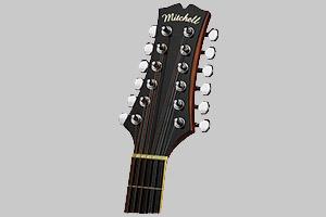 گیتار 12 سیم