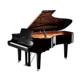 Yamaha C6X PE | پیانو گرند یاماها