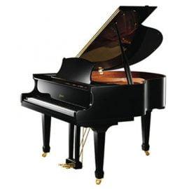 پیانو آکوستیک R8 A111