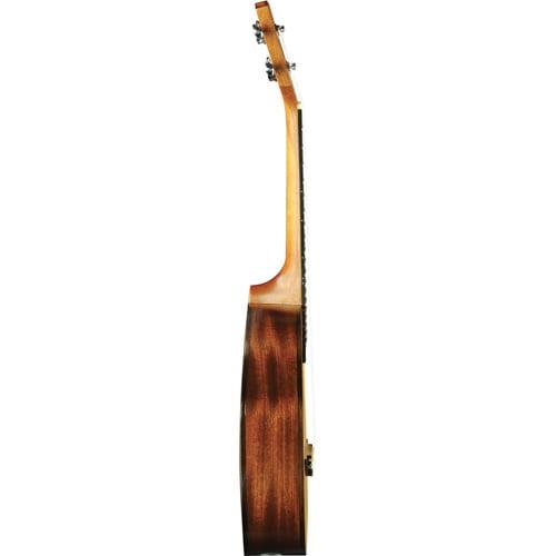 eko-evo-ukulele-concert-cedar-یوکللی
