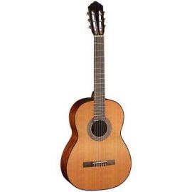 قیمت گیتار کلاسیک CORT AC100C-SG