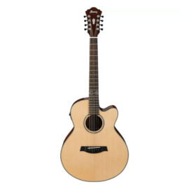 Ibanez AEL108MD-NT گیتار آیبانز